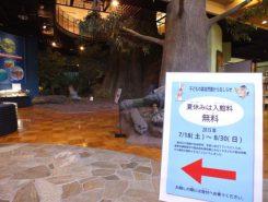 みなくち子どもの森自然館は夏休み中、入館料が無料