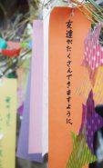 雲井駅には笹に飾られた短冊が
