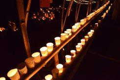 竹や紙コップなど、約800個もの灯籠が並べられた
