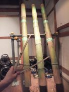 石川雷太さんの作品「昼間光城」 竹を叩くと、映像と音が一体となった不思議な空間が広がる