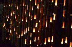 長い竹を、何本も並べて作られた灯り