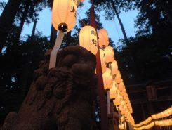 提灯に照らし出される狛犬