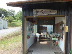 併設されている産地直売所では地元のお母さんが育てた新鮮野菜が販売されている