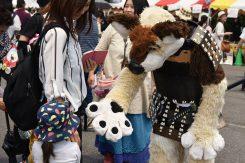 この日のために大阪から駆けつけてくれたゆるキャラ「ドンファン」