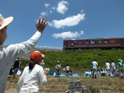 今度は信楽高原鉄道に乗って見に来よう!