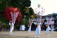 踊るのは当時と同じく、神社の境内