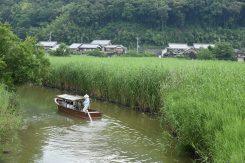 重要文化的景観第一号に選定された水郷