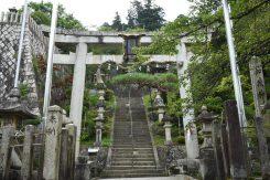加茂神社の湧き水が地蔵川の水源