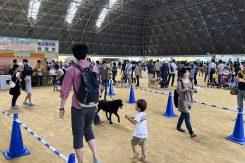 「2018しが動物フェスティバル」
