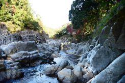 犬上川が約10mの落差を流れ落ちる