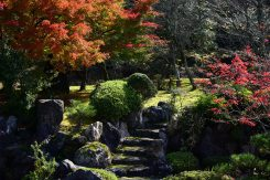 綺麗に手入れされた庭園