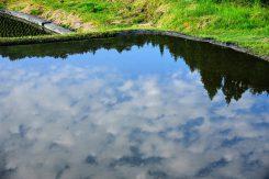 水面に映る青空