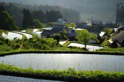 自然豊かな集落